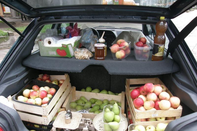 Kainos tik didėja: džiovintų obuolių saujelė – trys litai