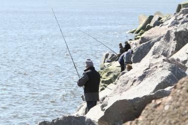Specialia akcija siekiama apsaugoti lašišines žuvis