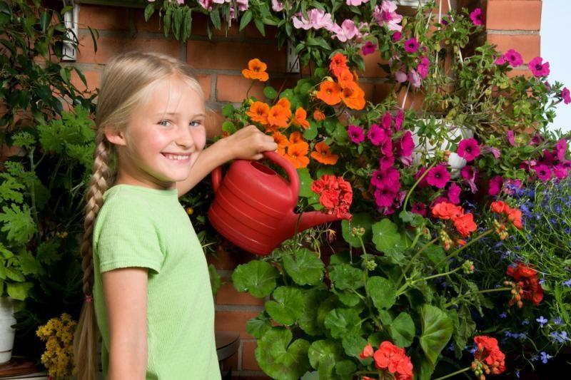 Gėles vasaroti – į nuobodžius balkonus