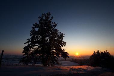 Orai Kaune: šalta žiema įsitaisė ilgam