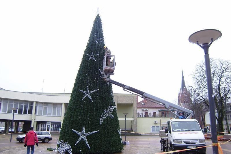 Palangoje penktadienį bus įžiebta Kalėdų elgė