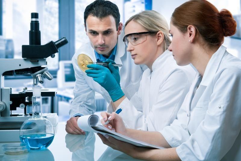 """Daugeliui programos """"Žiliberas""""projektų vadovaus VU mokslininkai"""