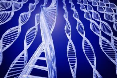 VU siūlo tapti pirmaisiais genetikos bakalaurais Lietuvoje