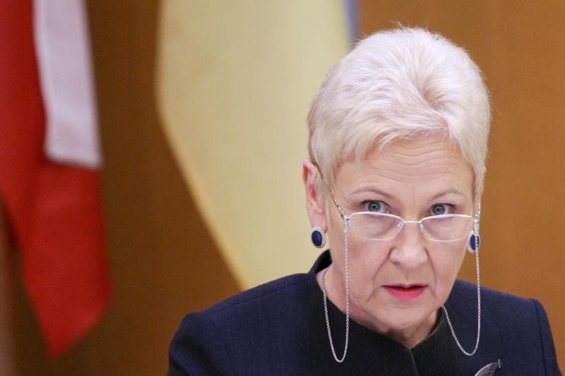 I.Degutienė tikisi naudos iš lietuvių kilmės kongresmeno J.Shimkaus