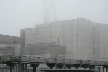 Prezidentė: Lietuvai dar reikės milijardų IAE uždaryti