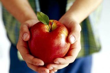 Mokyklose vaikams bus dalijami nemokami vaisiai?
