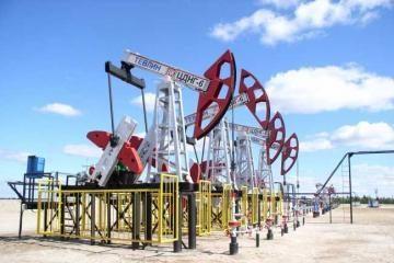 Naftos žaliavos brango, o jos produktai - ne