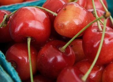 Vyšnių šventėje – garsiausi Vyšniauskai
