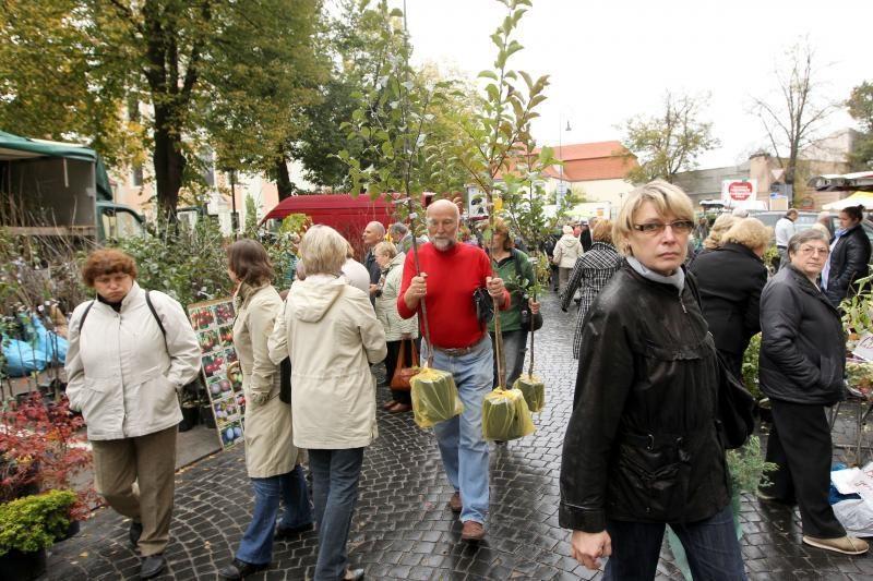 Šeštadienį Vilniaus centre – sodininkų mugė