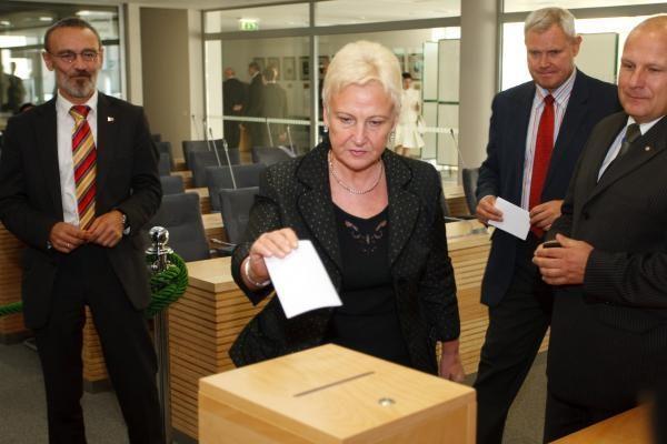 I.Degutienė siūlo pagalvoti apie kitokią savivaldybių rinkimo tvarką