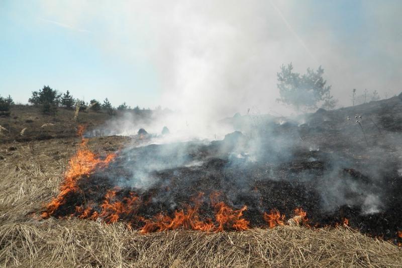 Savaitgalį ugniagesiai 370 kartų vyko gesinti degančios žolės