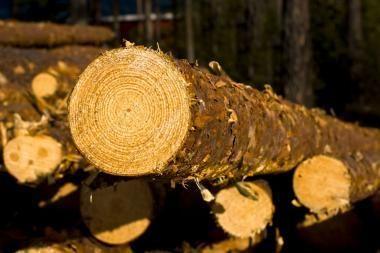 Medienos perdirbėjai skaičiuoja užsakymų augimą
