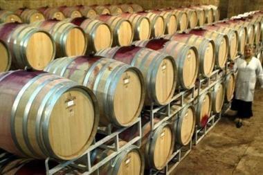 Lenkai padės Gruzijai gerdami vyną