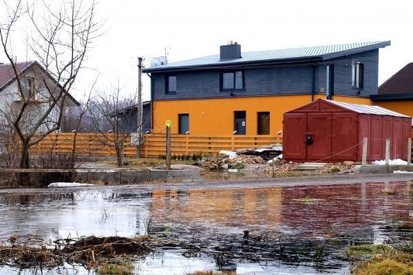 Aplinkosaugininkai neigia trukdantys kovoti su potvyniu