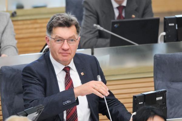 Seimo opozicija nori ištirti padėtį energetikoje