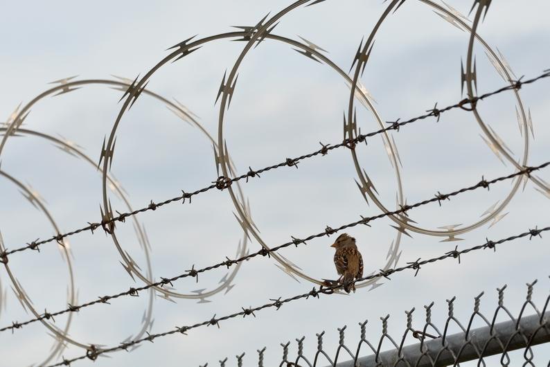 JAV kalinys rezgė sąmokslą nukirsti galvas savo teisėjui ir prokurorei