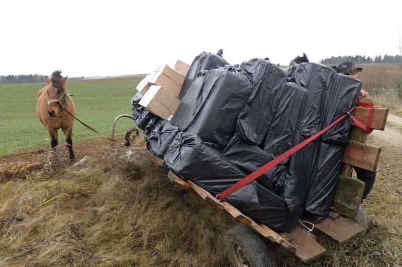 Arklys traukė vežimą su šimtatūkstantinės vertės kontrabanda