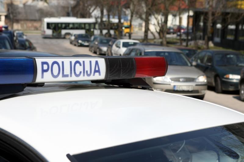 Kelių erelis Nemenčinėje apgadino policijos automobilį