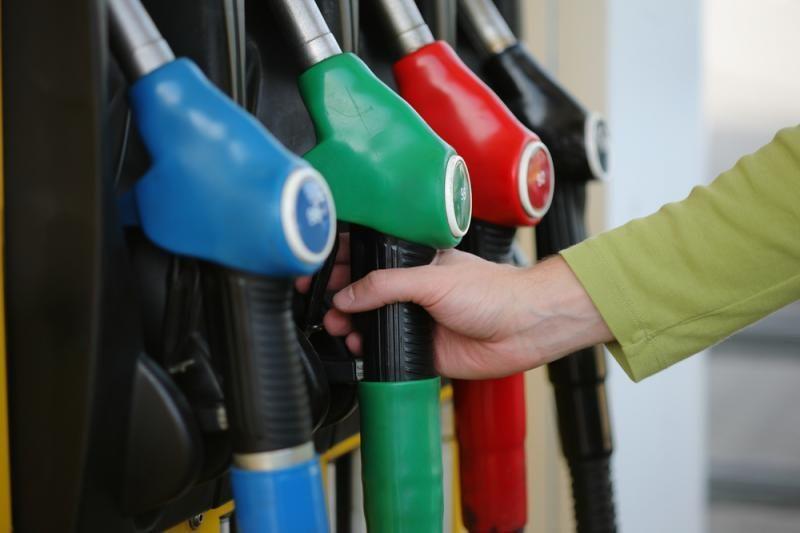 Pabrangusi žaliava sugriovė biodegalų verslo planus