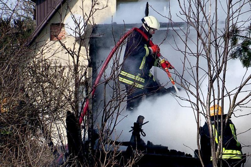 Šiaulių r. fermoje kilęs didžiulis gaisras pražudė gyvulius