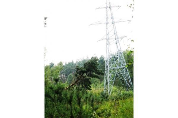 Šiandien elektros tiekimą RST planuoja atnaujinti daugumai vartotojų