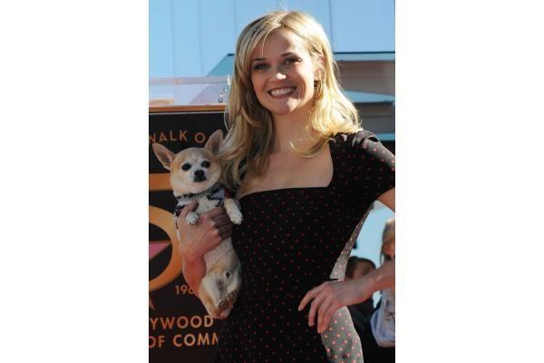 Holivudo Šlovės alėjoje atidengta aktorės R.Witherspoon žvaigždė