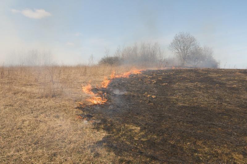 Klaipėdos apskrityje šįmet jau išdegė 10 hektarų pievų