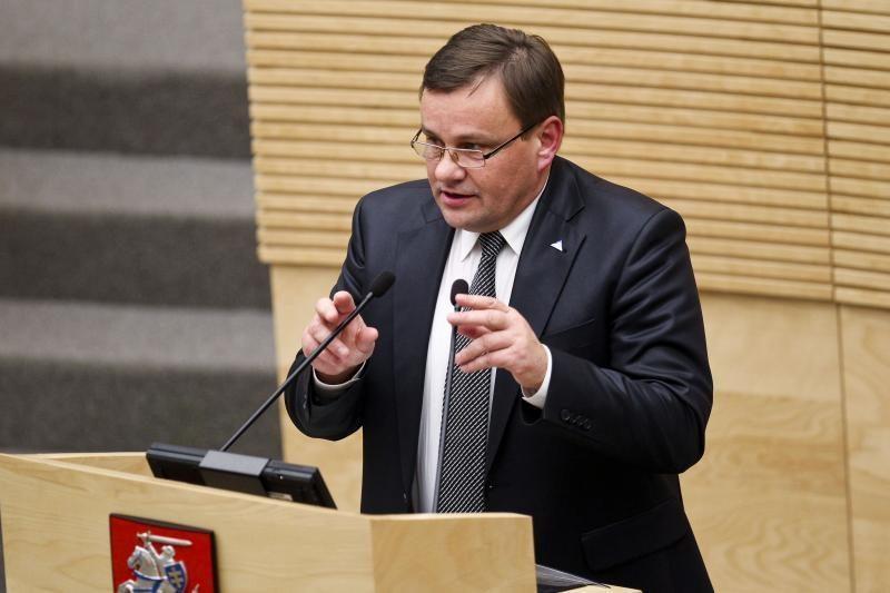V. Gedvilas kaltina Prezidentę skaldant parlamentą ir sakant netiesą
