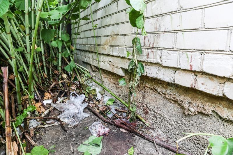 Kaune krūmuose rastas žiauriai nužudytas benamis