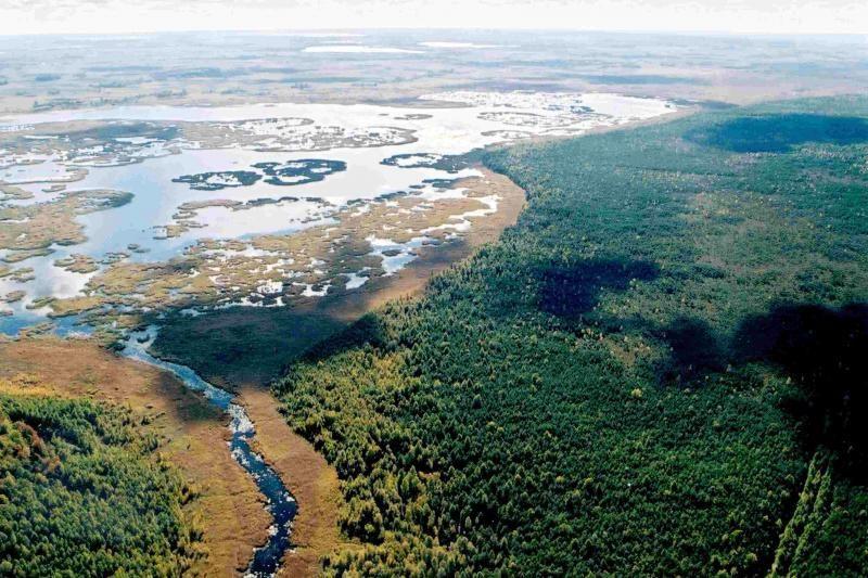Žuvinto biosferos rezervatui – UNESCO sertifikatas