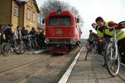 Pavogta dalis traukinio siauruko bėgių