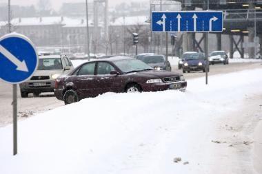 Kaunietė siūlo: kaip miestiečiams kovoti su sniego pusnimis?