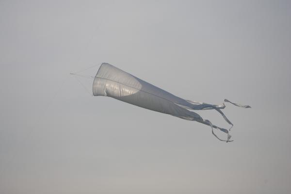 Vėjo dieną Vilniaus dangų raižė aitvarai