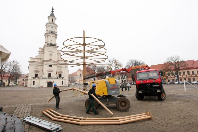 Rotušės aikštėje Hanzos medį pakeis Kalėdų eglė
