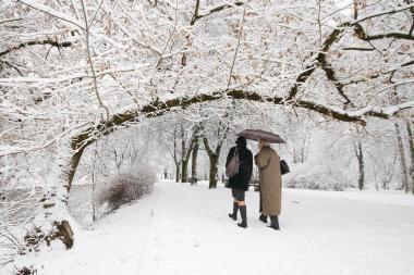 Europos parke Vasario 16-ąją – daugybė angelų
