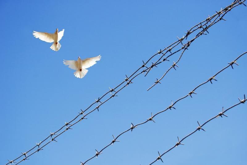 Kelia nerimą į laisvę anksčiau laiko išeisiantys 3000 nuteistųjų