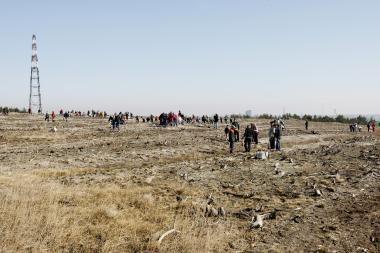Pakrančių apsaugos pasieniečiai sodino pušaites