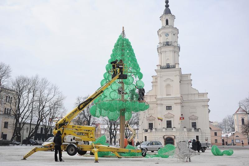 Kauno smaragdinė eglė lauks kitų Kalėdų