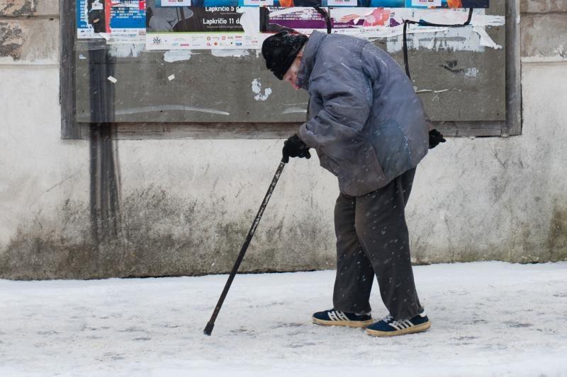 Seniūnaičius išrinks tik bedarbiai ir pensininkai?