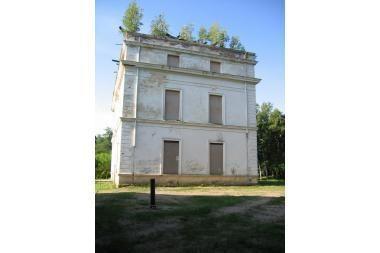 Už medžius ant istorinio pastato - bauda