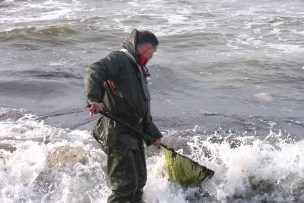 Iš Baltijos jūros plūstelėjo gintarai
