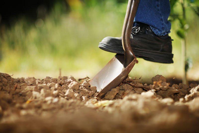 Klaipėdos rajone atliekant kasimo darbus žemėmis užverstas žmogus