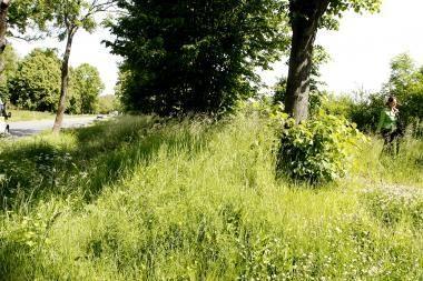 Šalčininkų ir Trakų rajonuose - žmogžudystės