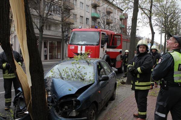 Automobilis rėžėsi į medį
