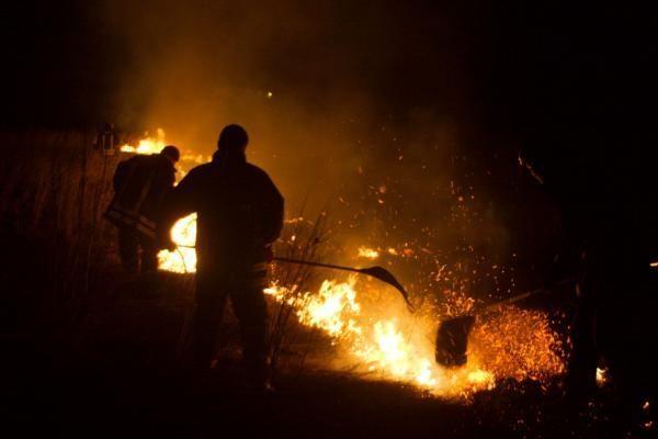 Lietuvą siaubia pernykštės žolės gaisrai