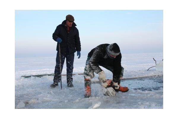 Kuršių marių ledas - skulptūroms kurti