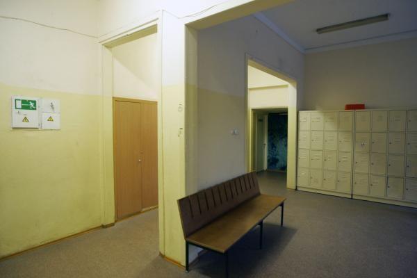 Vilniaus mokykloje nustatytas kiaulių gripo atvejis (papildyta)