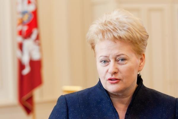 D.Grybauskaitė teigia, kad be tiesmuko kalbėjimo NATO gynybos planų tektų laukti dar ilgai