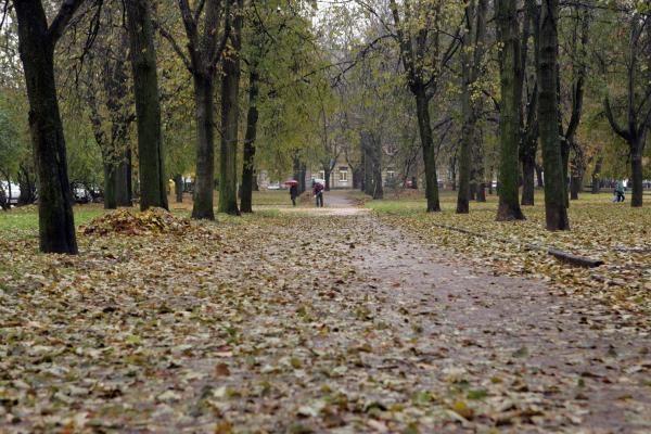 Lukiškių aikštė: kiuženų kalnai ir purvynė sostinės centre