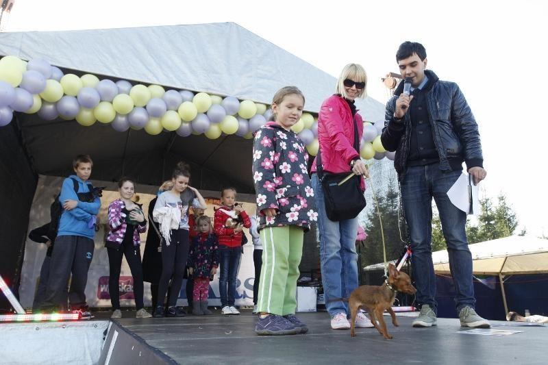 Šimtai gyvūnų mylėtojų su savo augintiniais linksminosi Gargžduose